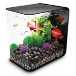 BiOrb Flow aquarium 30 liter MCR zwart
