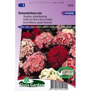 Dianthus dubbelbloemig bloemzaden - Duizendschoon Mix