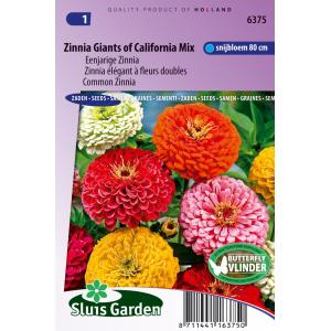 Eenjarige Zinnia bloemzaden – Zinnia Giants of California Mix