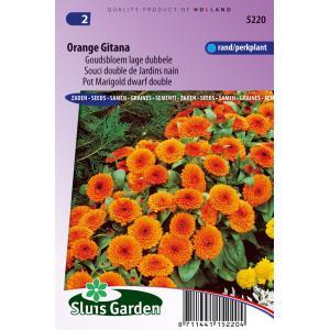 Goudsbloem lage dubbele bloemzaden - Orange Gitana
