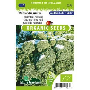 Boerenkool biologische zaden - Westlandse Winter