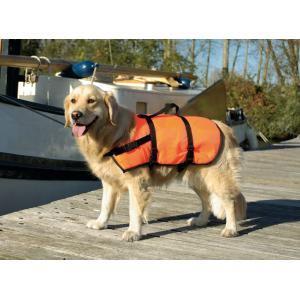 Zwem en veiligheidsvest - L