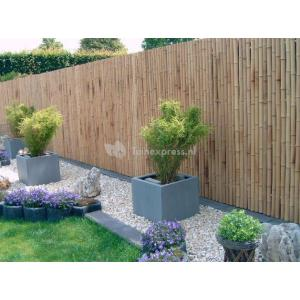 Een bamboe schutting in je tuin?