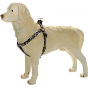 Hondentuig Envy 35-60cm zwart