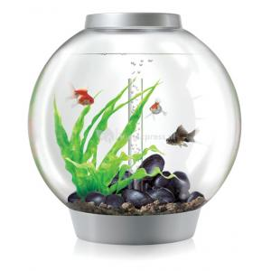 BiOrb Classic aquarium 30 liter LED Tropical zilver