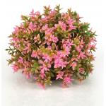 BiOrb bloemenbal roze aquarium decoratie