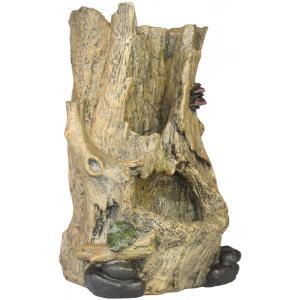 Kamerfontein boomstronk