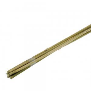 Bamboestok 150 cm - 10 stuks