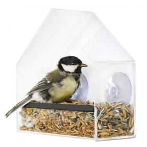 Vogel voederhuis Window
