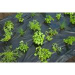 Kweekfolie voor tuinkruiden 0.95 x 5 m