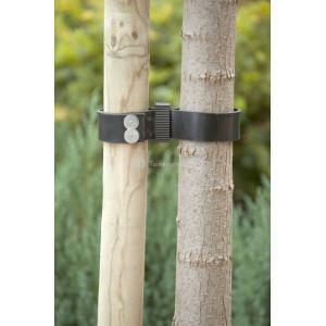Spijkerboomband 60 cm - 2 stuks