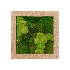 Moswand schilderij naturecast vierkant 70B