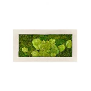 Moswand schilderij polystone rechthoek naturel 100A