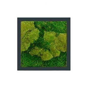 Moswand schilderij metaal stiel vierkant antraciet mat 50A