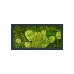 Moswand schilderij metaal stiel rechthoek antraciet mat 100A