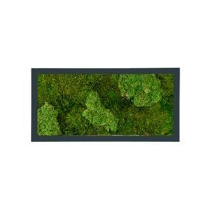 Moswand schilderij metaal stiel rechthoek antraciet mat 100B