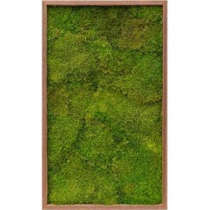 Moswand schilderij meranti hout rechthoek 100 platmos