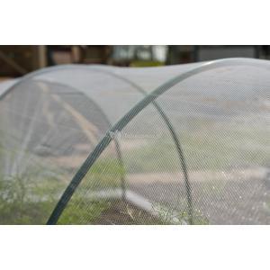 Anti-insectengaas transparant
