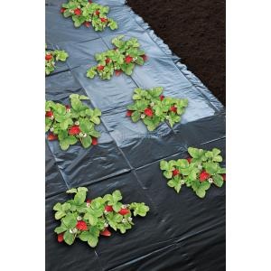 Aardbeienfolie micro-geperforeerd - 1.40 x 10m
