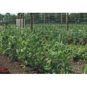 Klimnet voor planten - 2 x 5 meter