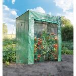 Tomato serre tuinkas