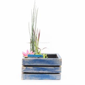 Mini vijver in houten kistje blauw - 2 stuks