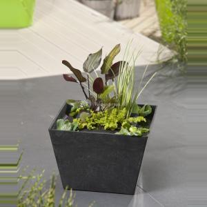 Mini vijver zwart met planteneiland - 2 stuks