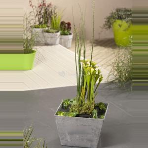 Mini vijver grijs met planteneiland - 2 stuks