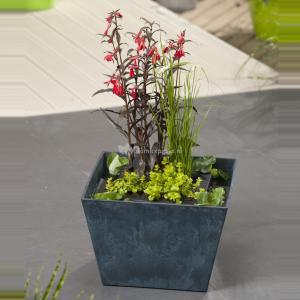 Mini vijver blauw met planteneiland - 2 stuks