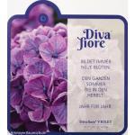 "Hydrangea Macrophylla ""Diva Fiore Violet""® boerenhortensia"