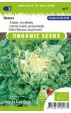 Andijvie biologische zaden - Nuance