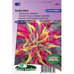 Bladamarant driekleurig bloemzaden - Garden Select