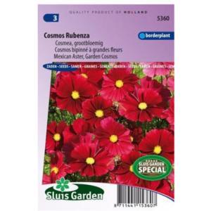 Cosmea Grootbloemig bloemzaden - Cosmos Rubenza
