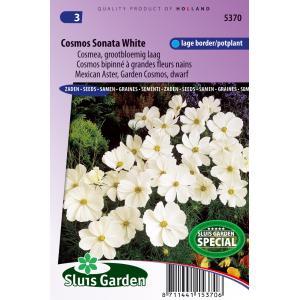 Cosmea grootbloemig laag bloemzaden - Cosmos Sonata White
