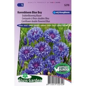 Dubbelbloemig blauw bloemzaden - Korenbloem Blue Boy