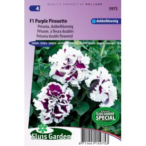 Dubbelbloemige petunia bloemzaden – F1 Purple Pirouette