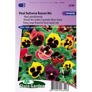 Grootbloemige viool bloemzaden – Viool Zwitserse reuzen mix