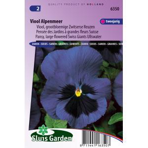 Grootbloemige Zwitserse reuzen viool bloemzaden – Viool Alpenmeer