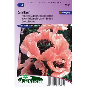 Oosterse klaproos bloemzaden – Coral reef