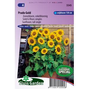 Zonnebloem enkelbloemig halfhoog bloemzaden - Prado Gold