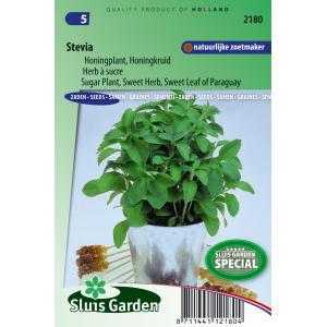 Stevia zaden - Honingkruid