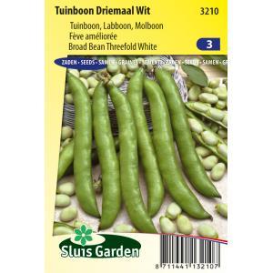 Tuinboon zaden - Driemaal Wit