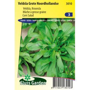 Veldsla zaden - Grote Noordhollandse