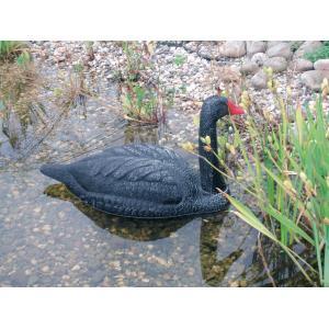 Zwaan zwart dierfiguur